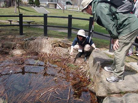稲穂山口チーム 高台緑地公園 カエルの卵は・・・